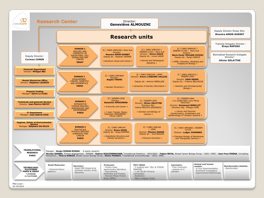 Curie Research Center Organisation Chart