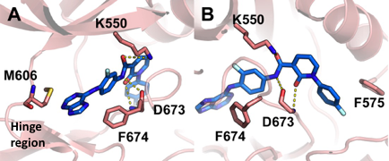 Figure 2: Purine derivative docked into the TYRO3 active site views from the Adenosine (A) and Allosteric (B) binding site