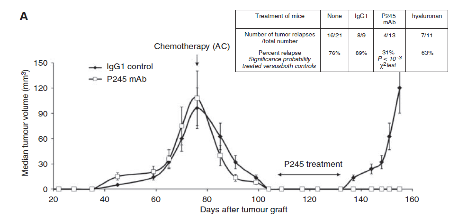 Figure 2: (A) Tumor growth curves of HBCx-10 after chemotherapy alone or chemotherapy followed by P245 anti-CD44 mAb treatment.