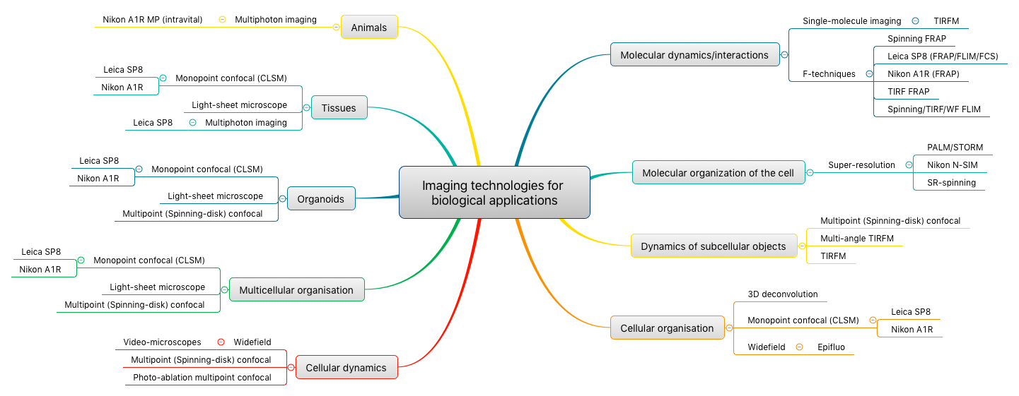 Imaging technologies for biological applications