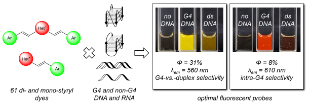 Identification of optimal fluorescent probes for G-quadruplex nucleic acids